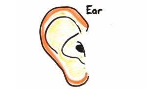 Ear-Age